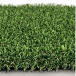 K9 grass